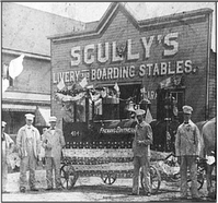 Scullys livery boarding stables