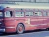 Marathon Bus line Bus
